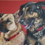 Hundeportrait Doppelportrait