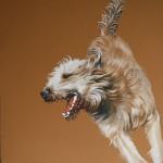 Hundeportrait Bewegungsstudie