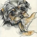 Maxel, Mischtechnik auf Zeichenpapier
