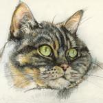 Lucy, Mischtechnik auf Zeichenpapier